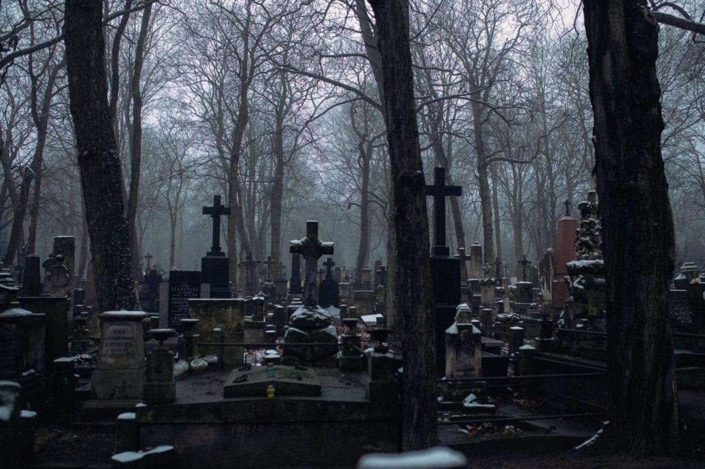 cremation services Elmwood Park, IL